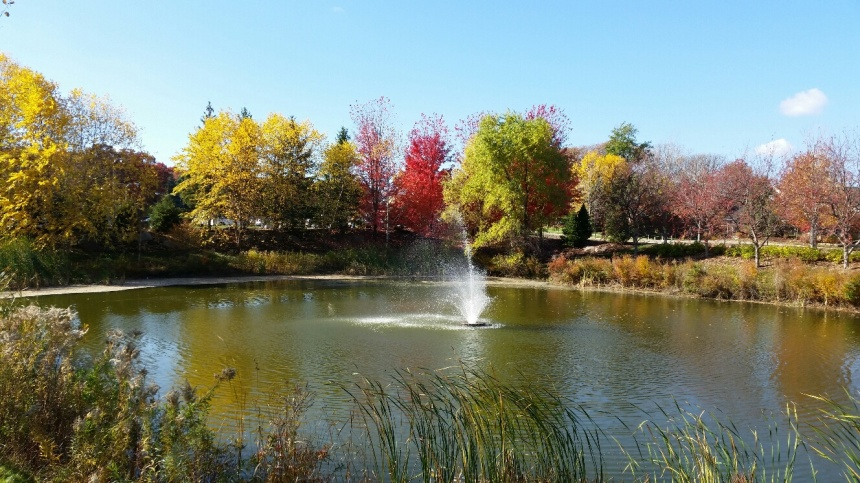 Hidden Lakes Fall Fountain 2014