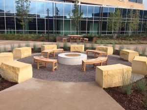 Target North fire pit